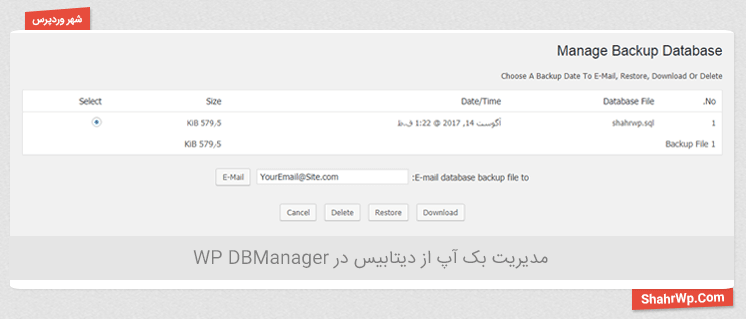 مدیریت بک آپ در WP DBManager