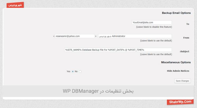 بخش تنظیمات در WP DBManager