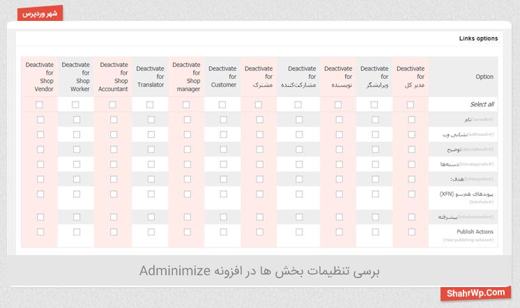 برسی تنظیمات بخش ها در افزونه Adminimize