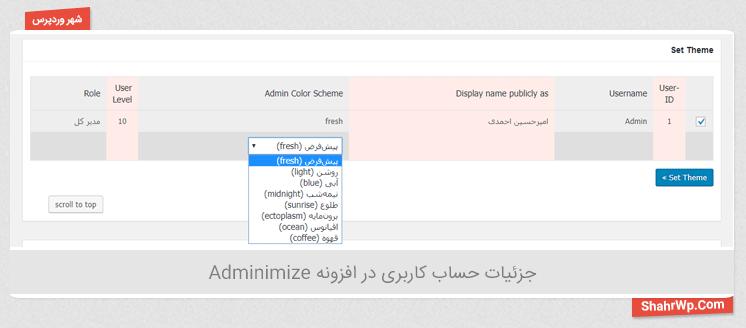 جزئیات حساب کاربری در افزونه Adminimize